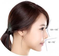 hiko nose